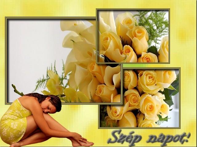 An den Beitrag angehängtes Bild: http://kepmester.silihost.hu/images/140/8538/00000397.jpg