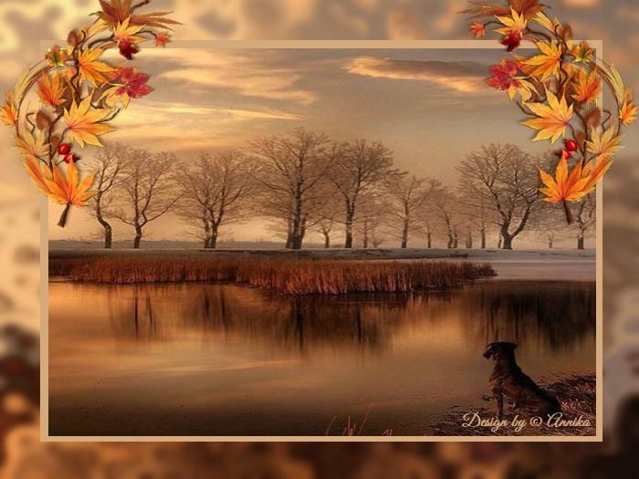 An den Beitrag angehängtes Bild: http://kepmester.silihost.hu/images/1692/10030/00000074.jpg