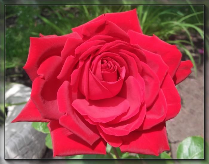 An den Beitrag angehängtes Bild: http://kepmester.silihost.hu/images/1692/10700/00000148.jpg