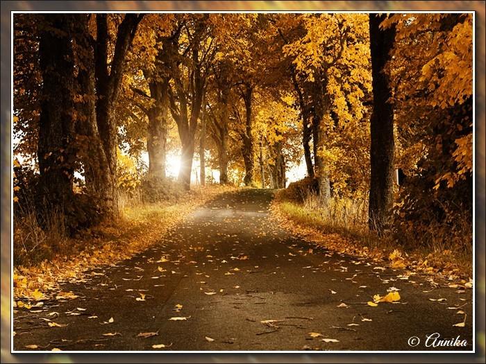 An den Beitrag angehängtes Bild: http://kepmester.silihost.hu/images/1692/10984/00000106.jpg
