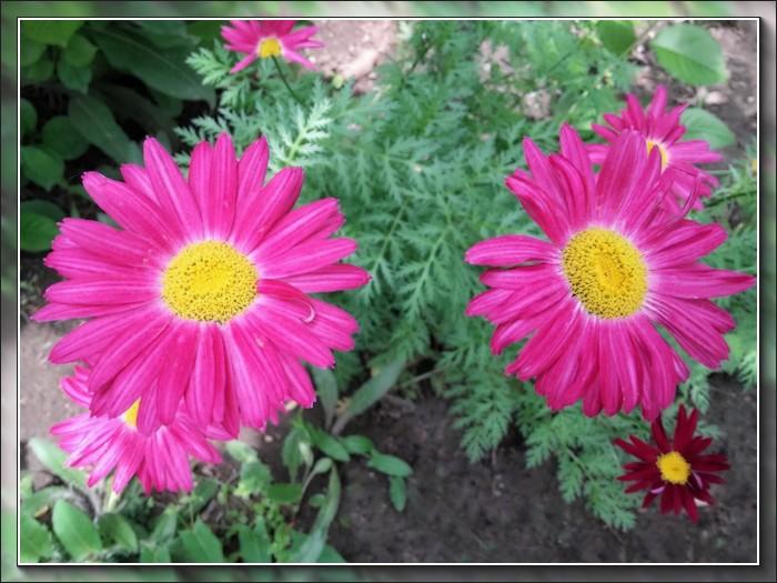 An den Beitrag angehängtes Bild: http://kepmester.silihost.hu/images/1692/10995/00000121.jpg