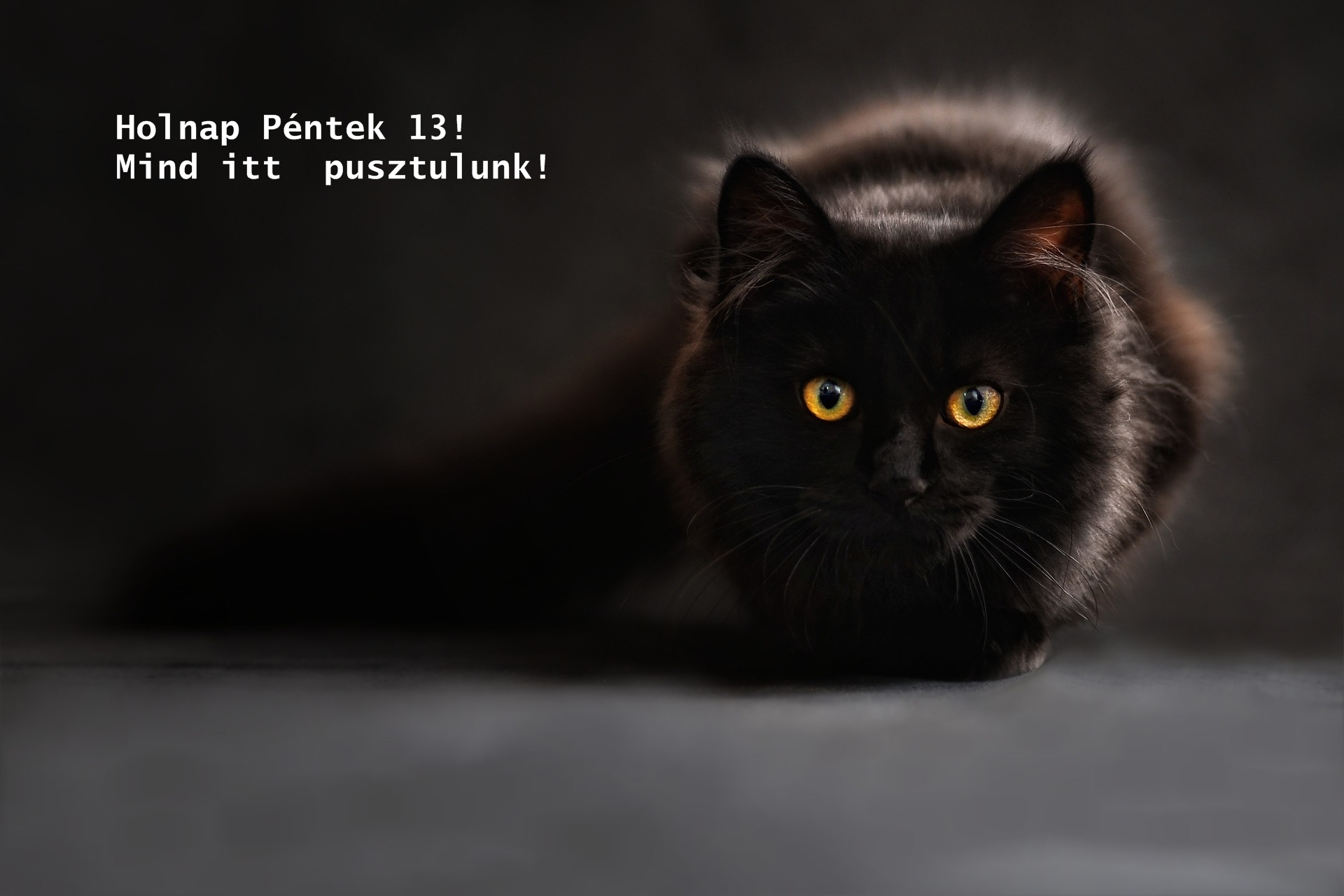 http://kepmester.silihost.hu/images/1703/10978/00000425.jpg
