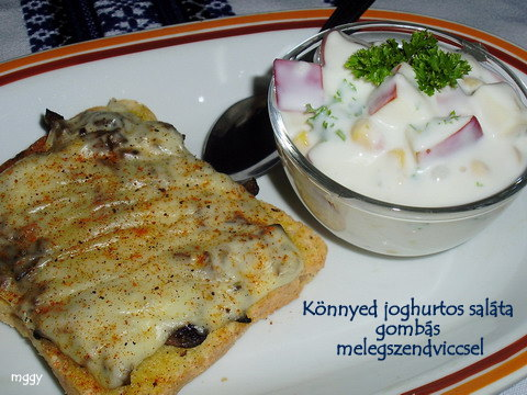 Könnyed joghurtos saláta gombás melegszendviccsel