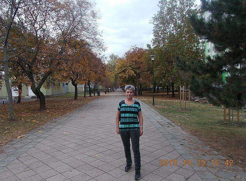 http://kepmester.silihost.hu/images/279/10163/00000029.jpg