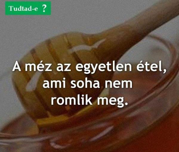 http://kepmester.silihost.hu/images/279/10414/00000051.jpg