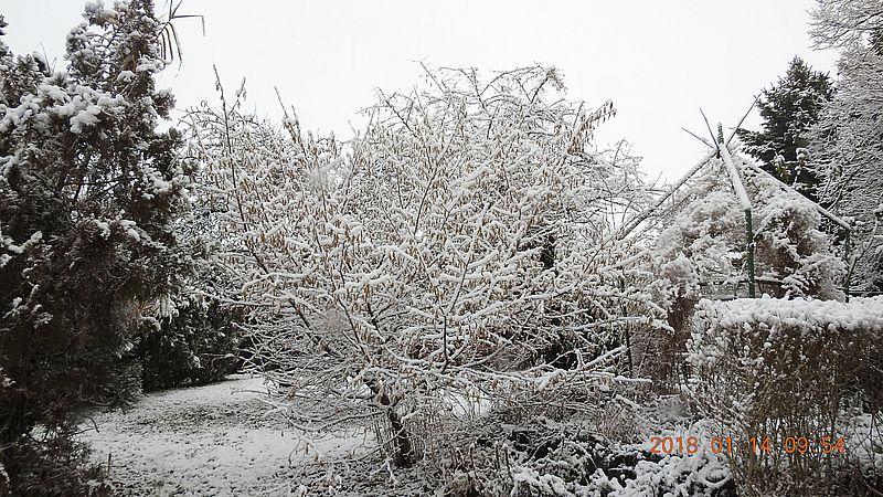 http://kepmester.silihost.hu/images/279/10673/00000318.jpg