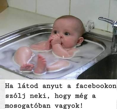 http://kepmester.silihost.hu/images/279/11093/00000120.jpg