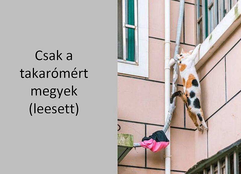 http://kepmester.silihost.hu/images/279/5664/00000436.jpg