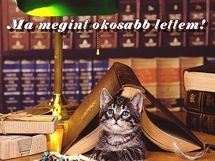 http://kepmester.silihost.hu/images/279/5665/00000197.jpg