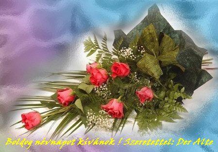 http://k3bela.gportal.hu