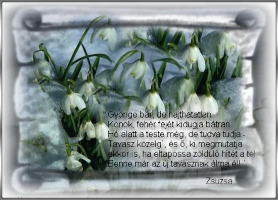 http://zsuzsiweb.freeweb.hu/